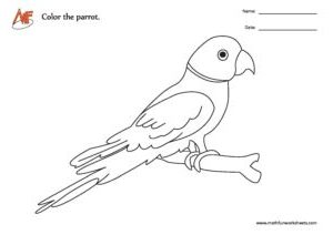 Parrot Coloring Worksheet